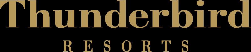 thunderbird-2010-primary-logo